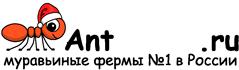 Муравьиные фермы AntFarms.ru - Петрозаводск